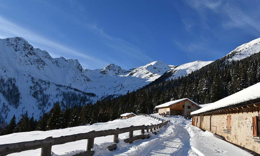 Offerte Settimana Bianca Trentino Alto Adige