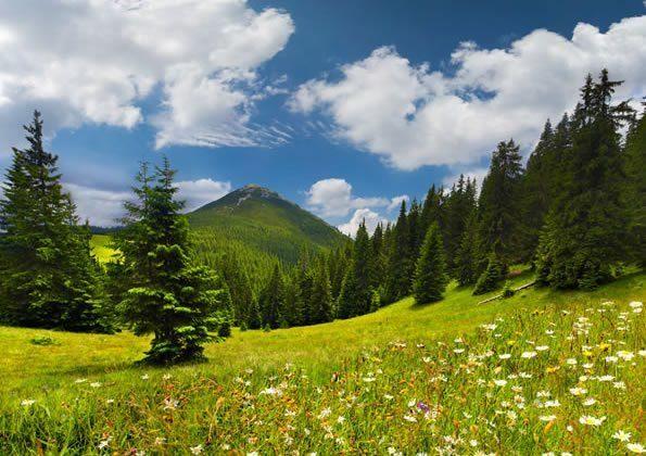 Natura / Agriturismo