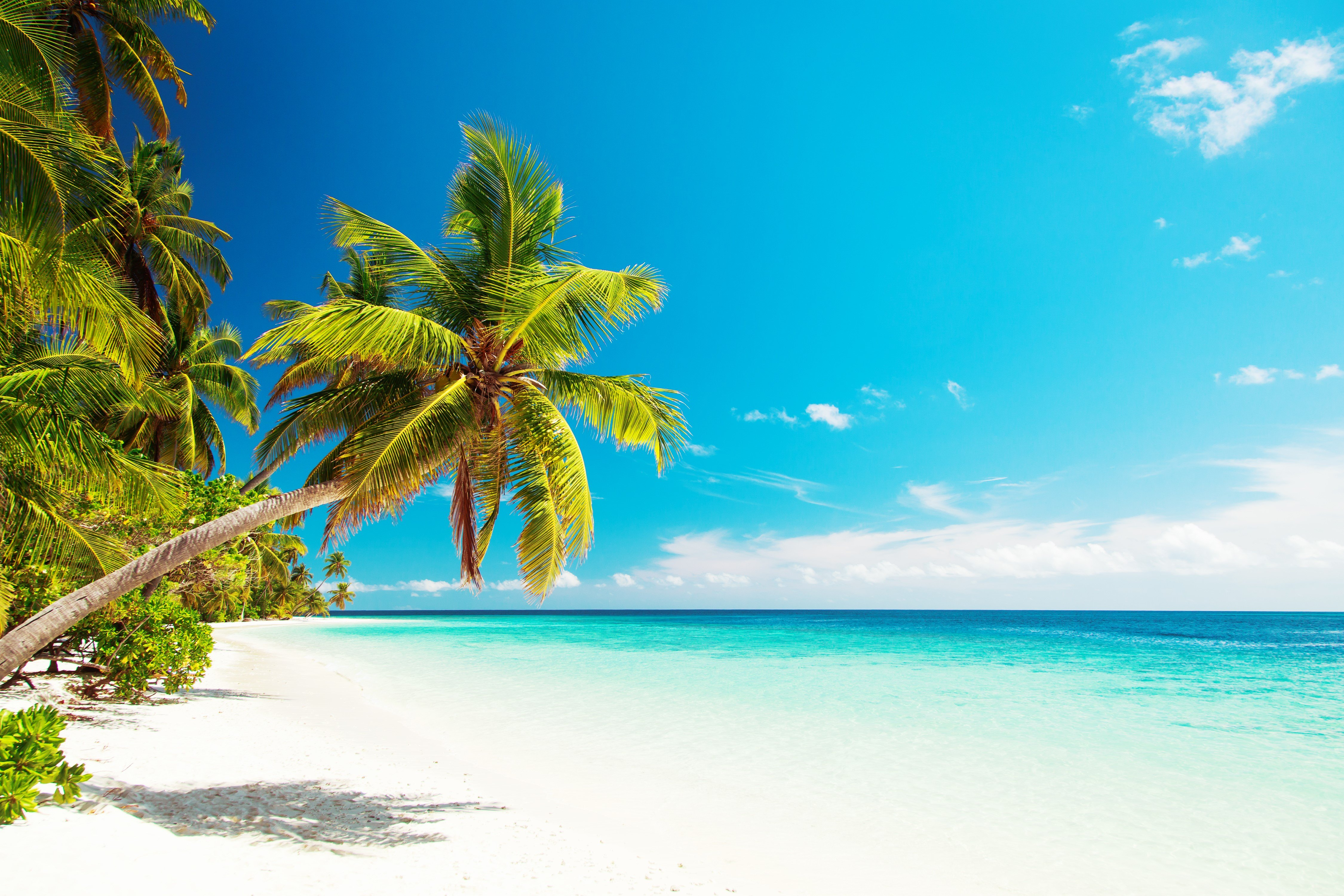 Vacanza nell'atollo di Malé Sud, nel paradiso delle Maldive