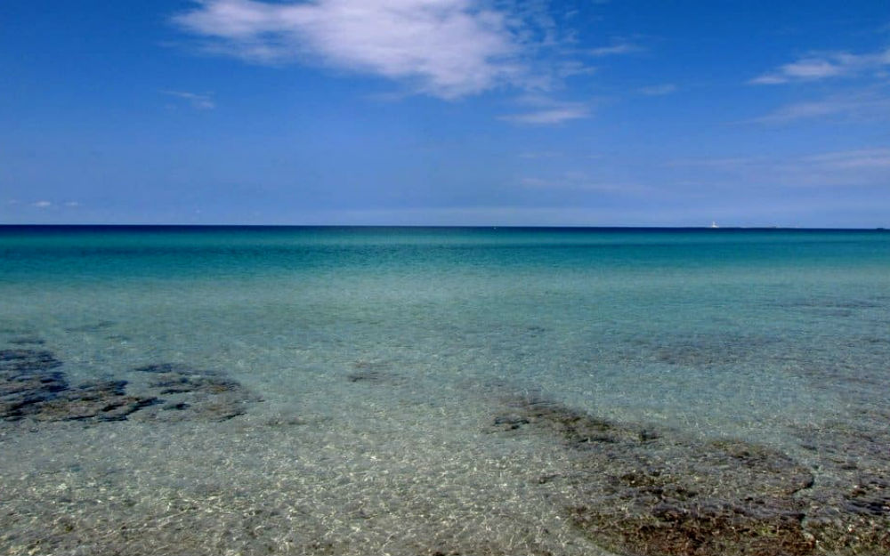 Puglia - Gallipoli (LE)