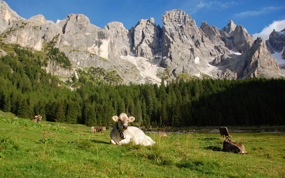 Trentino-Alto Adige - Serrada di Folgaria (TN)