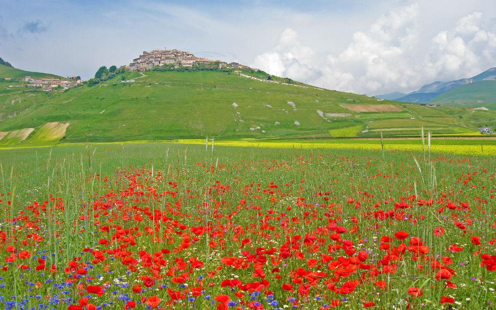 Umbria - Montone (PG)