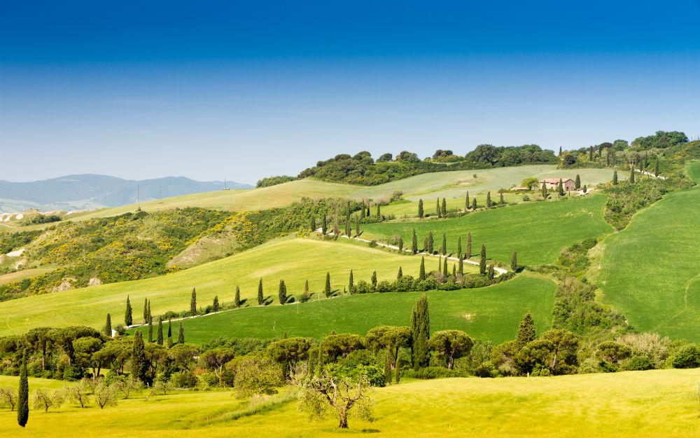Toscana - Pescia (PT)