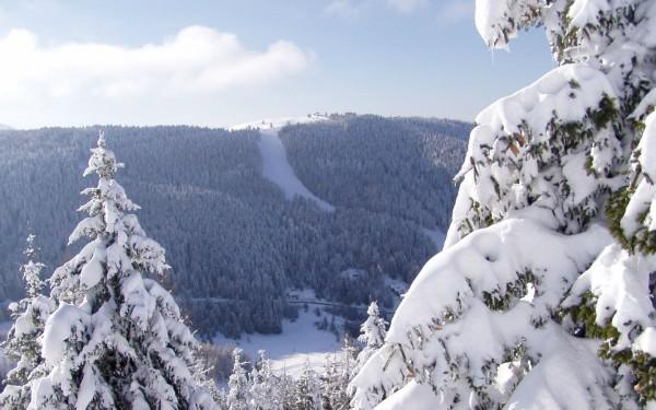 Trentino-Alto Adige - Folgaria (TN)