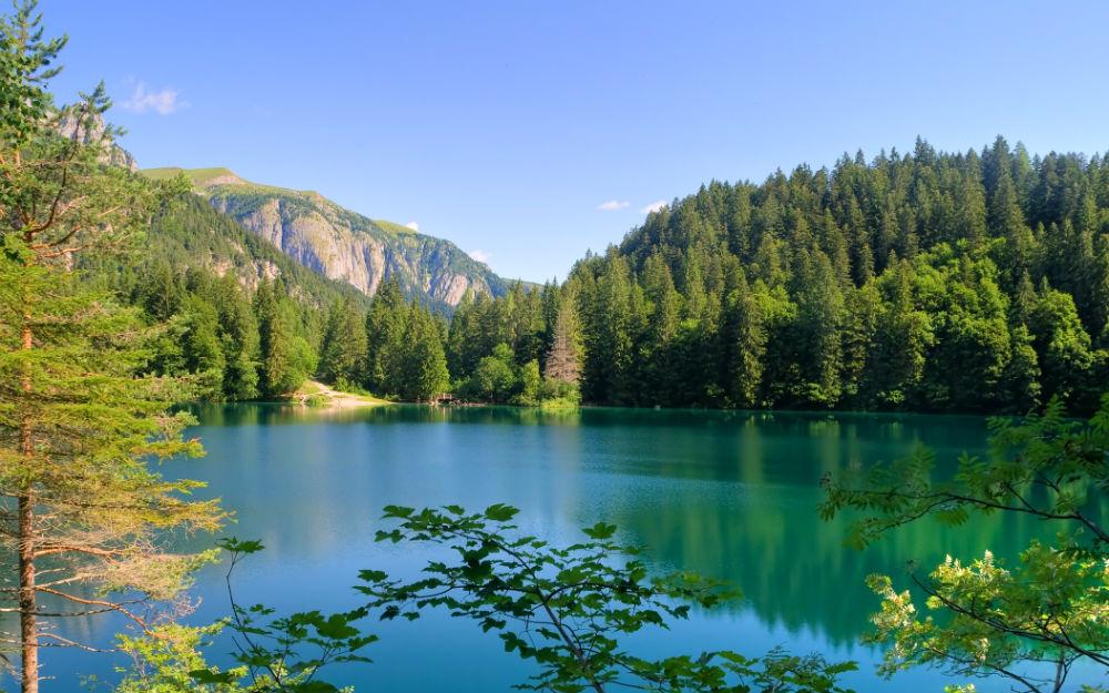 Trentino-Alto Adige - Vervo' (TN)