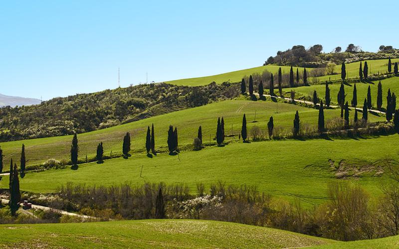 Toscana - Chianciano Terme (SI)