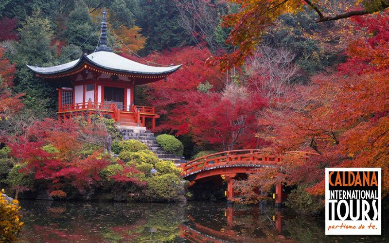 Giappone - Osaka, Kyoto, Otsu, Nara, Tokyo