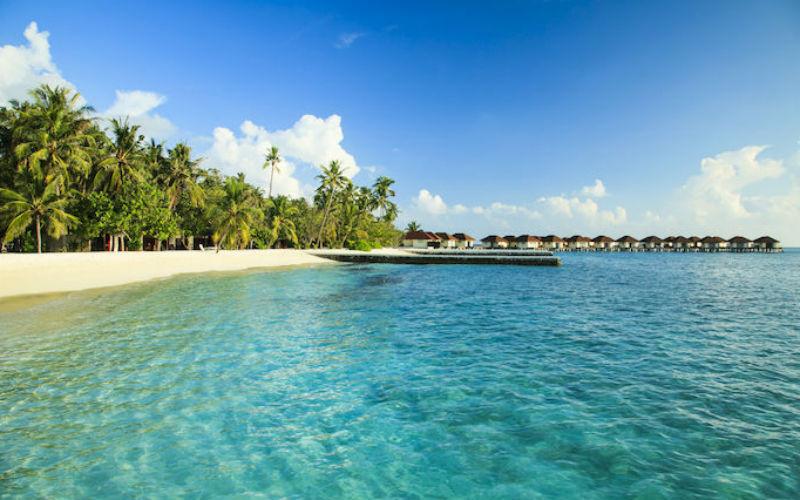 Bravo Alimathà **** - Maldive, Atollo di Vaavu. Offerta Dpiù Viaggi ...