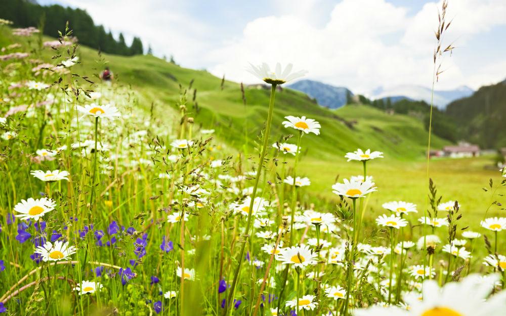 Austria - Hermagor