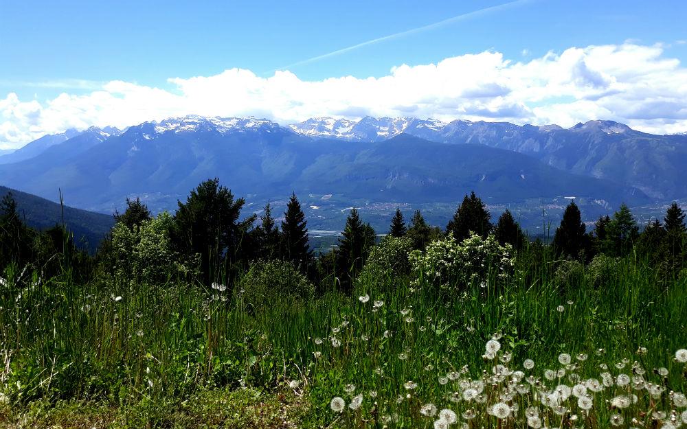 Trentino-Alto Adige - Tres (TN)